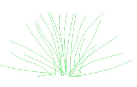 arbusto bloque autocad