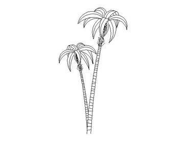 palmeras para autocad dwg