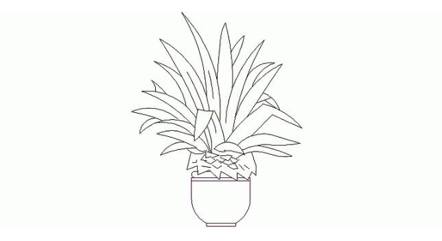 planta en maceta de interior autocad